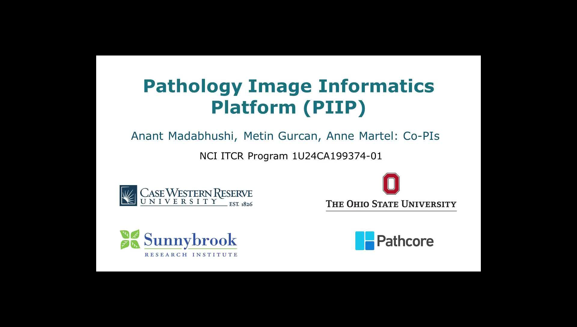 An Image Analysis Resource for Cancer Research: PIIP