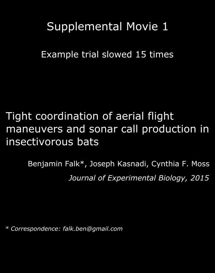 flight ds 1011