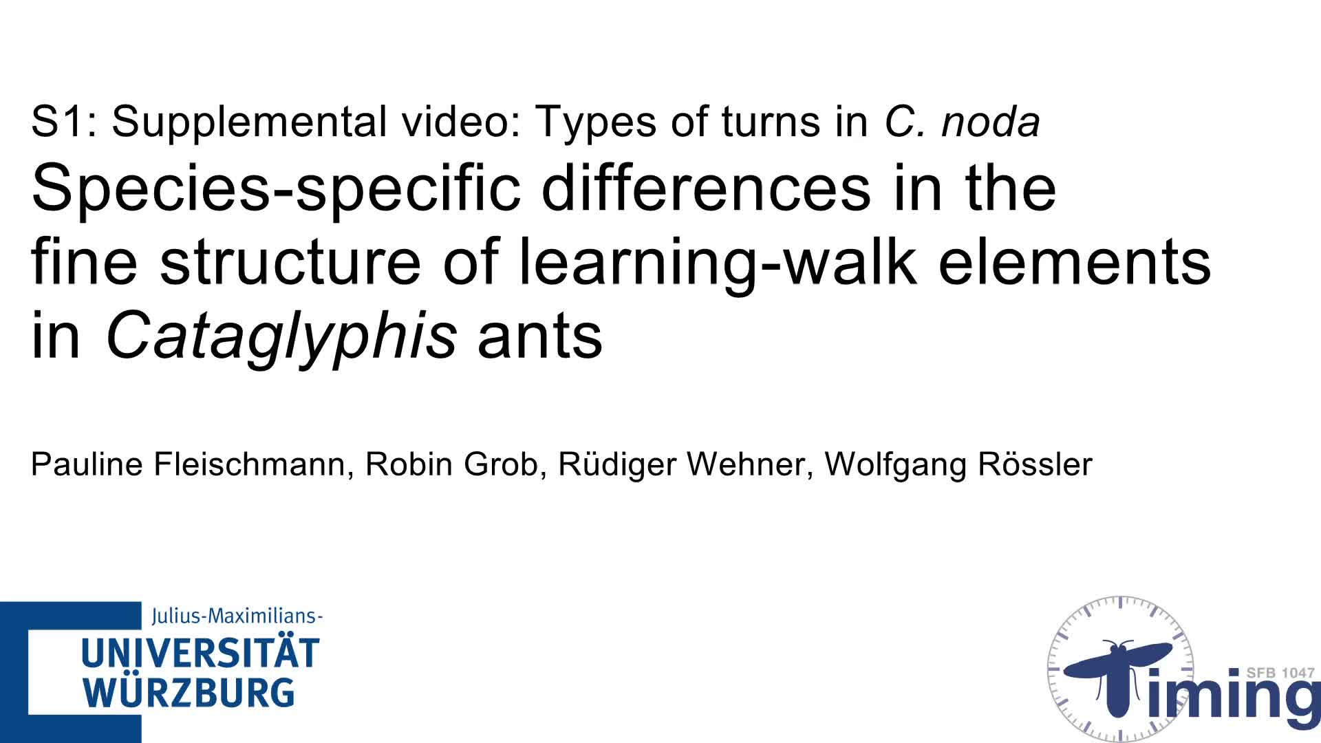 Species Specific Differences In The Fine Structure Of Learning Walk Landscape Lighting Layout Determining What To Buy Howto Voltr Elements Cataglyphis Ants Journal Experimental Biology