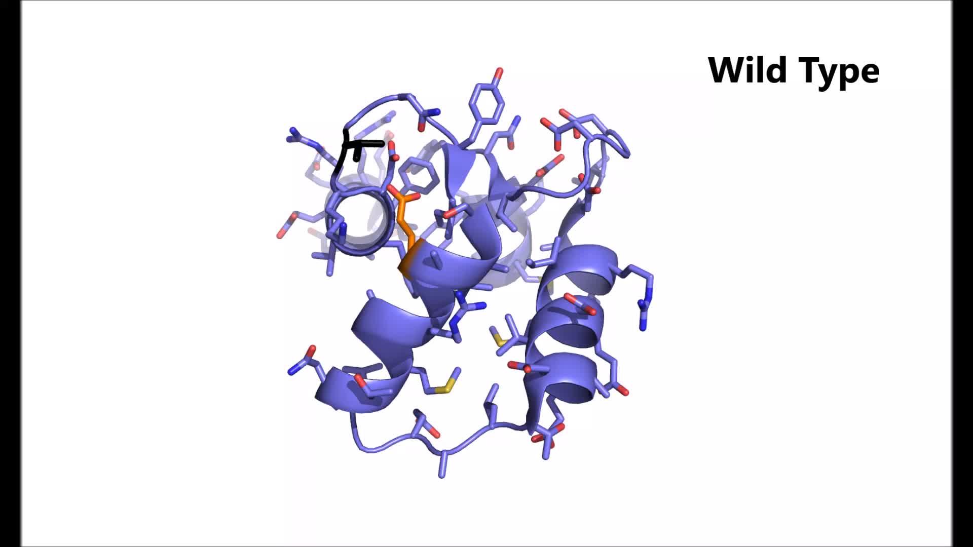 Arrhythmia mutations in calmodulin cause conformational