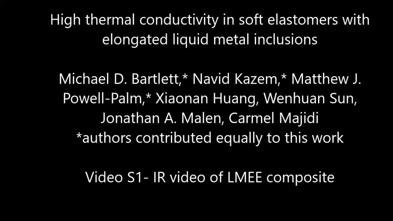 High thermal conductivity in soft elastomers with elongated liquid