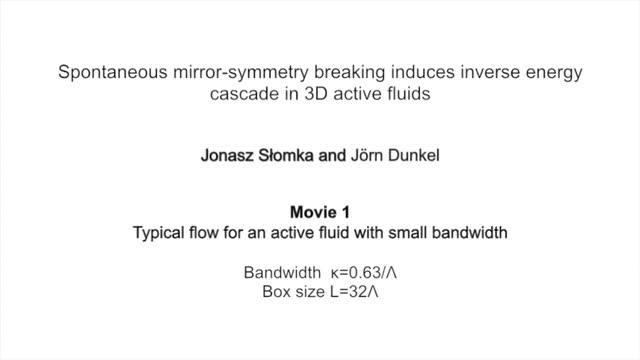 Spontaneous Mirror Symmetry Breaking Induces Inverse Energy