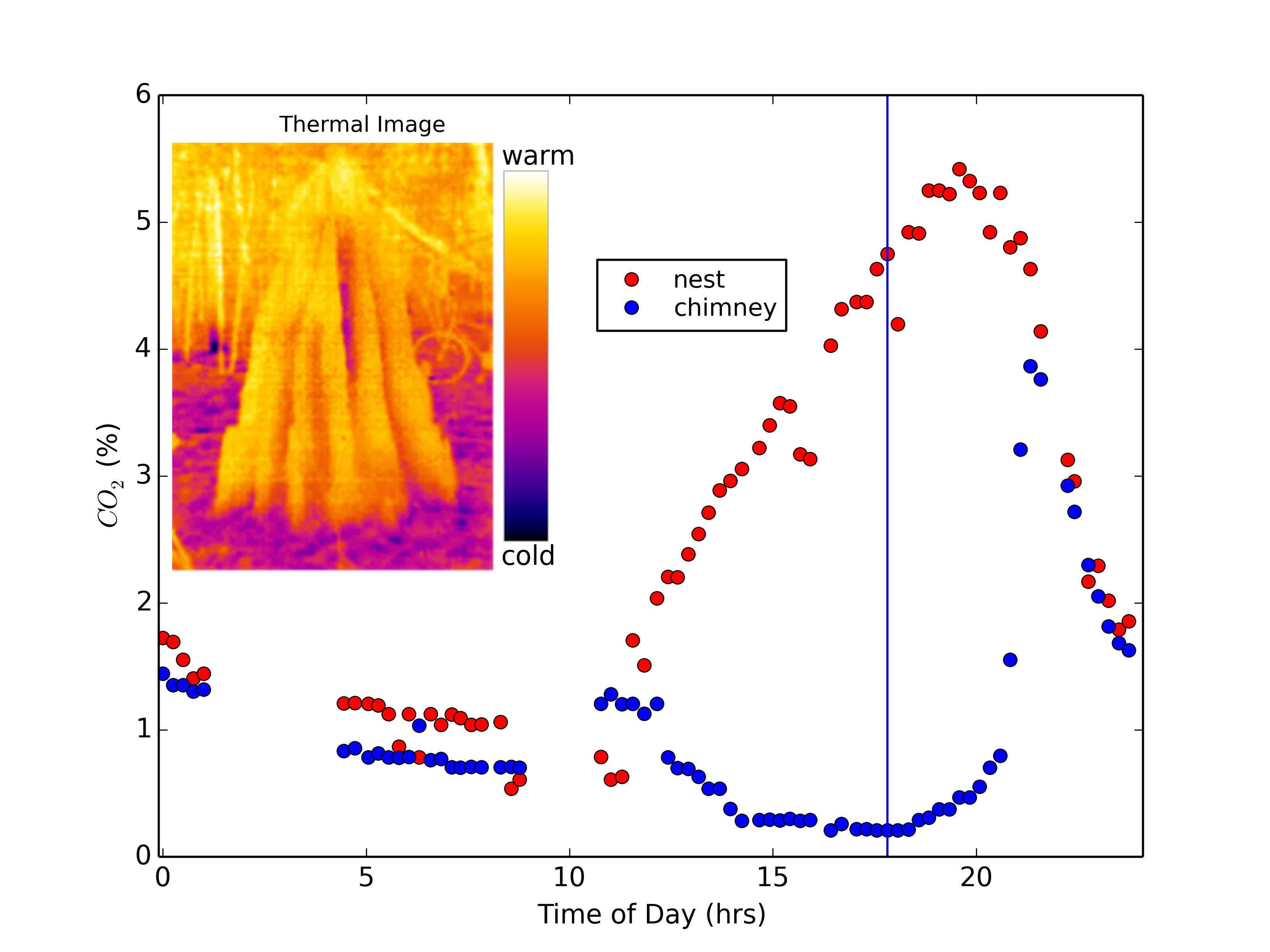 Termite mounds harness diurnal temperature oscillations for