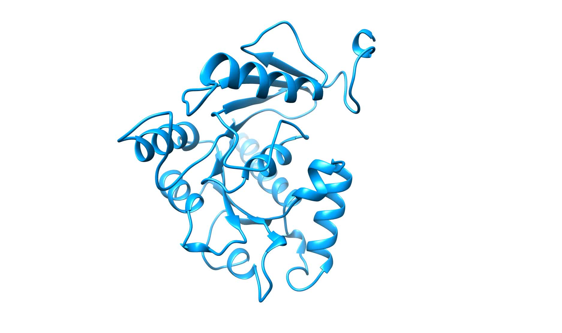 Structures of the fungal dynamin-related protein Vps1 reveal a ...