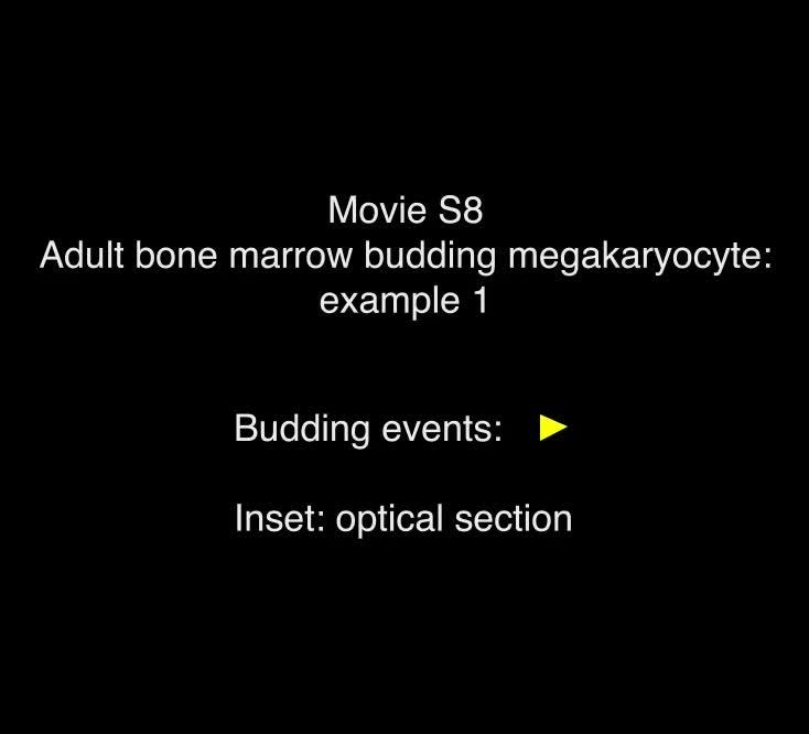 Membrane budding is a major mechanism of in vivo platelet ...