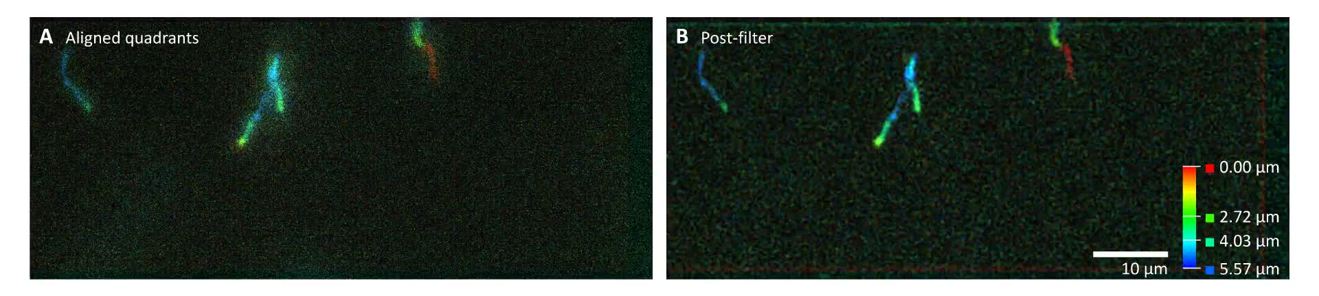 High-speed multifocal plane fluorescence microscopy for